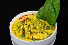 Schließen Sie herauf thailändischen Lebensmittel-Fisch-Curry mit Kokosnusssaft Lizenzfreies Stockbild