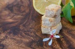 Schließen Sie herauf Trieb von Fried Tofu mit Kopien-Raum Lizenzfreie Stockfotografie