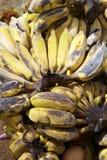 Schließen Sie herauf viele alte Banane Stockfotografie