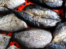 Schließen Sie herauf viele Trockenfisch auf dem roten Netz am Markt auf Straßenlebensmittel Stockfotografie