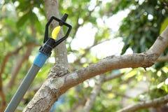 Schließen Sie herauf Wasser-Berieselungsanlage im Obstgartengarten Lizenzfreie Stockfotos