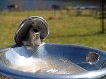 Schließen Sie herauf Wasserbrunnen lizenzfreie stockfotos
