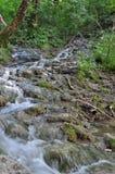 Schließen Sie herauf Wasserfall Lizenzfreie Stockfotografie