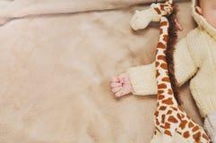 Schließen Sie herauf wenig Hand des schlafenden netten neugeborenen Babys und seines Spielzeugs Stockbilder