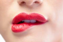 Schließen Sie oben auf dem sinnlichen Modell, das rote Lippen beißt Stockfotografie