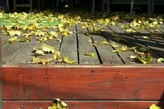 Schließen Sie oben auf den Blättern und der Plattform Lizenzfreies Stockfoto