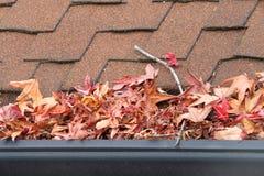 Schließen Sie oben auf der Regengosse, die mit Blättern und Rückstand verstopft wird stockbilder