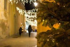 Schließen Sie oben auf einem Weihnachtsbaum auf Unschärfe-Hintergrund in einem erleichterten S stockbilder