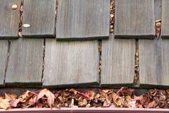 Schließen Sie oben auf hölzernem Schindeldach mit der Regengosse, die mit Blättern verstopft wird stockbild