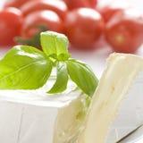 Schließen Sie oben auf moderigem Käse Lizenzfreies Stockbild