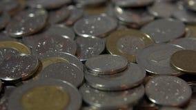 Schließen Sie oben auf polnischen Münzen stock video footage