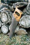 Schließen Sie oben vom alten Handsaw, der auf einem Stapel des hölzernen Bauholzes in einem Wald stillsteht lizenzfreie stockfotos