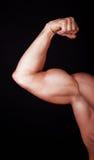 Schließen Sie oben vom Arm des Mannes, der zweiköpfigen Muskel zeigt Lizenzfreies Stockbild