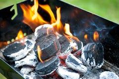 Schließen Sie oben vom barbaque in der Vorbereitung Lizenzfreie Stockfotos