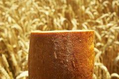 Schließen Sie oben vom Brot vor Getreidefeld Lizenzfreie Stockfotos