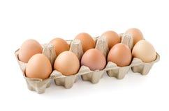 Schließen Sie oben vom Ei auf weißem Hintergrund Lizenzfreie Stockbilder