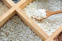Schließen Sie oben vom feinen Stein oder vom Korn im hölzernen Löffel für das Herstellen des schönen Blumentopfs Lizenzfreie Stockfotos