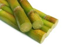 Schließen Sie oben vom frischen Zuckerrohr Lizenzfreie Stockbilder