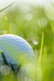 Schließen Sie oben vom Golfball auf Gras mit bokeh Lizenzfreie Stockfotografie