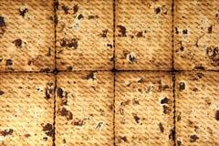 Schließen Sie oben vom köstlichen Rosinenplätzchenhintergrund Stockfotografie