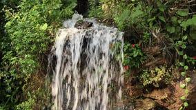Kleiner Tropischer Wasserfall Im Garten Stock Footage