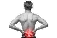 Schließen Sie oben vom Mann, der seine schmerzliche Rückseite reibt Schmerzlinderung, Chiropraktikkonzept stockbilder
