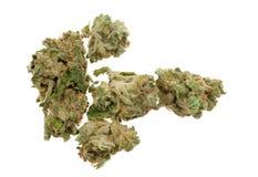 Schließen Sie oben vom Marihuana (Hanf) Stockbild