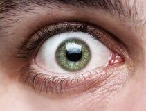 Schließen Sie oben vom menschlichen Auge Stockbild