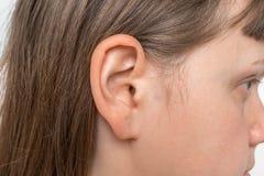 Schließen Sie oben vom menschlichen Kopf mit dem weiblichen Ohr lizenzfreie stockfotos