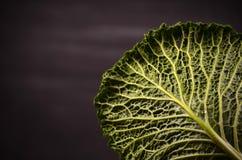 Schließen Sie oben vom organischen Wirsingkohl auf dem hölzernen Hintergrund Lizenzfreie Stockfotografie