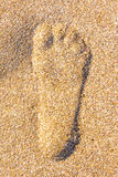 Schließen Sie oben vom Schritt in sandigem auf dem Strand Lizenzfreie Stockfotos