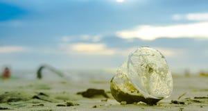 Schließen Sie oben vom selektiven Fokus des Plastikglases verlassen auf dem Strand Lizenzfreies Stockfoto