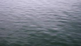 Schließen Sie oben vom Wasser stock video