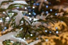 Schließen Sie oben vom Weihnachtsbaum Lizenzfreie Stockfotografie