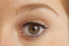 Schließen Sie oben vom womanâs Auge stockfotos