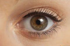 Schließen Sie oben vom womanâs Auge lizenzfreie stockfotografie