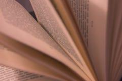 Schließen Sie oben von Blätter getriebenen Buchseiten lizenzfreie stockfotografie