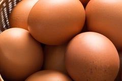 Schließen Sie oben von Brown-Eiern im Abtropfbrett Lizenzfreies Stockfoto