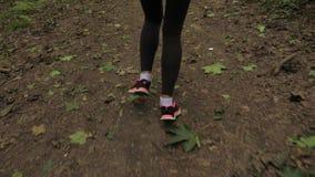 Schließen Sie oben von den athletischen weiblichen Beinen, die am Waldweg laufen stock video