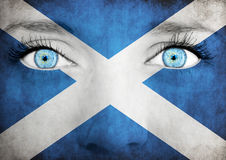 Schließen Sie oben von den Augen Gemaltes Gesicht mit Flagge von Schottland Stockfotografie