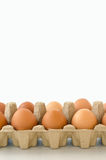 Schließen Sie oben von den Eiern Lizenzfreie Stockbilder