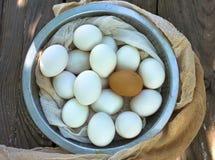 Schließen Sie oben von den Eiern in einer Schüssel Stockfotos