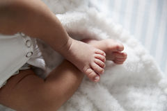 Schließen Sie oben von den Füßen des neugeborenen Babys im Kindertagesstätten-Feldbett Stockbild