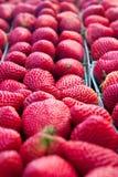 Schließen Sie oben von den frischen reifen Erdbeeren Stockfotografie