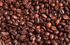 Schließen Sie oben von den Kaffeebohnen Stockfotografie