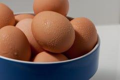 Schließen Sie oben von den nassen Eiern in einer blauen Schüssel Lizenzfreie Stockbilder