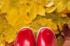 Schließen Sie oben von den roten Gummistiefeln auf Herbstlaub stockfoto