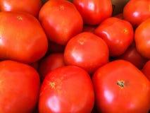 Schließen Sie oben von den roten reifen Tomaten Stockfotos