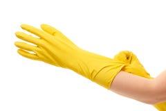 Schließen Sie oben von den weiblichen Händen, die auf gelbe schützende Gummihandschuhe sich setzen Stockfoto