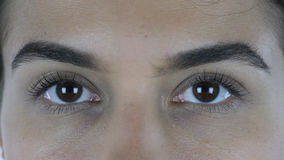 Schließen Sie oben von den weiblichen schönen Augen und in camera schauen Lizenzfreie Stockfotos